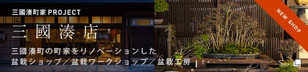 三国湊町の町家をリノベーションした盆栽ショップ/盆栽ワークショップ/盆栽工房